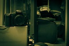 Day 39 (JPI63) Tags: 3 20d canon adobe lightroom 50mm18 greentint roomstuff