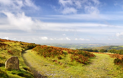A Bright September Morning on Dartmoor (Roantrum) Tags: devon dartmoor ivybridge mf10 twomoorsway roantrum redlaketramway