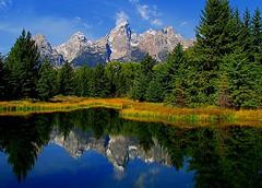 Grand Teton National Park (udbluehens) Tags: grandtetonnationalpark schwabacherslanding