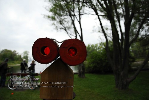 Rose Coloured Binoculars