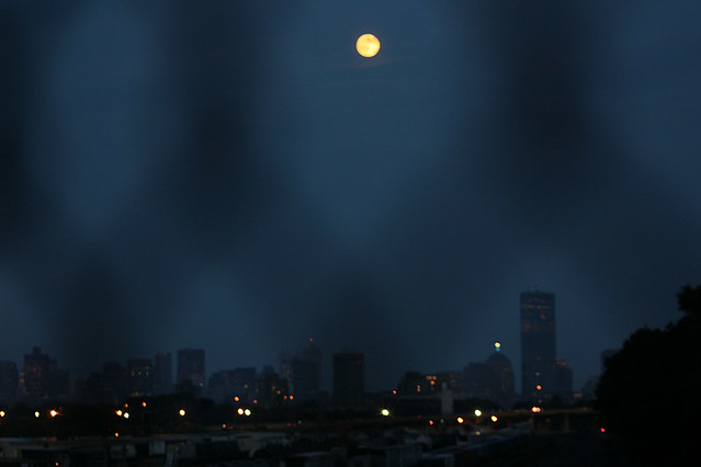 harvest moon + boston through chain link fence