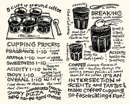 Stone Creek Coffee Cupping Sketchnotes 03-04