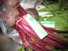 BEETROOT (RubyGoes) Tags: green leaves tag sydney vegetable nsw bunch bundle beetroot rubberband bukchoy