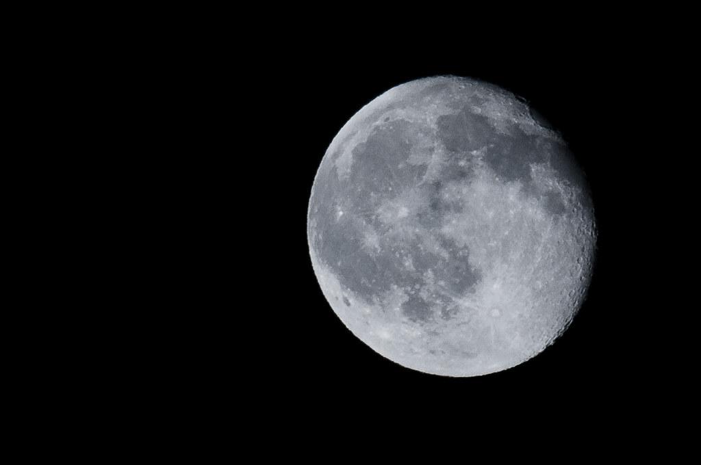 Luna lunera....cascabelera. 5025503348_e08718ce2c_b
