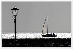 bij-Urk (Don Pedro de Carrion de los Condes !) Tags: lamp silver boot shiny contrejour zeil urk tegenlicht ijselmeer donpedro zuiderzee slhouette fok glinstering bemanning