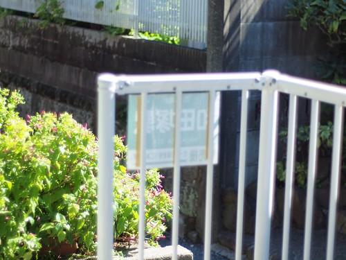 写真 5 - 2010-09-27