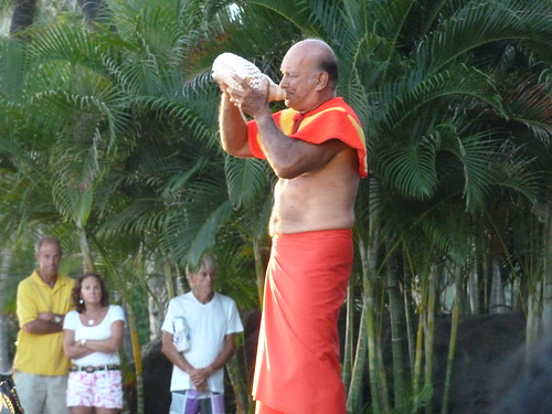 Conch shell player