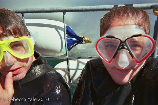 RYALE_Great_White_Shark_Diving-8