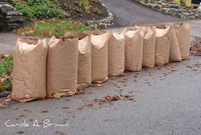 Bagged Leaves