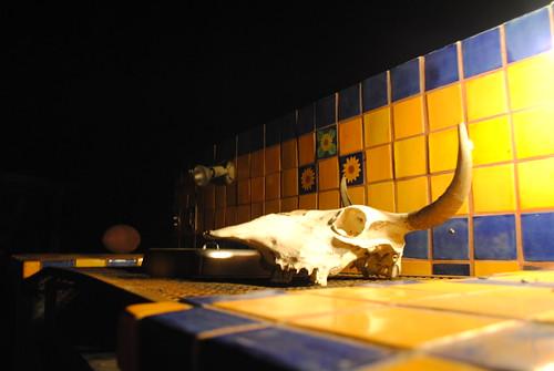 Cuatro Casa skull