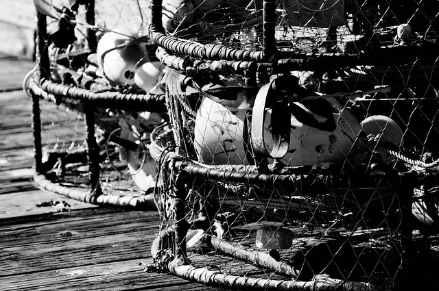 Crab pots lining the docks in Anacortes, WA