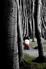 Through the forest (D.S photography [Daniel Slusarcik]) Tags: forest ghost ghosts ghostforest geisterwaldgeisterostseedeutschlandgermanywarnemndeeasteastgermanywaldtreesbumebaumtreeunheimlichfilmlocationbwblackandwhiteschwarzweisschwarzundweisswausblick