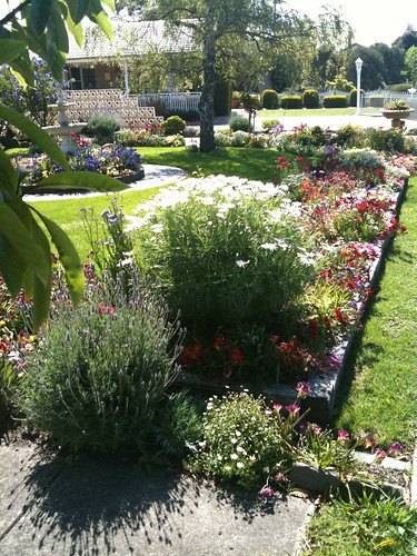 The most beautiful garden in Hastings