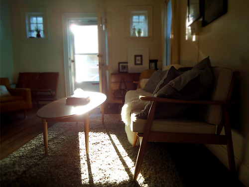 Afternoon Light