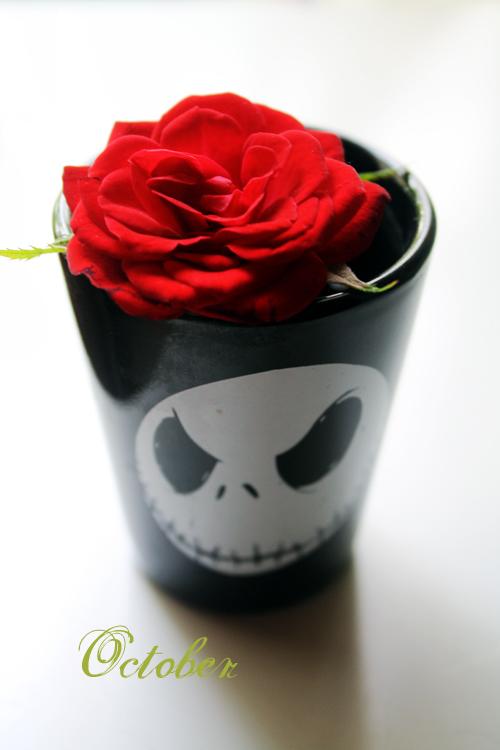 *October Rose*