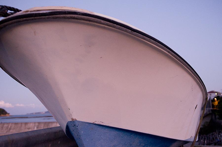 アオリイカを釣る朝