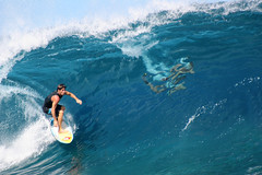 Surf those waves at Teahupoo, Tahiti. (cookiesound) Tags: trip travel vacation holiday travelling canon photography reisen surf fotografie surfer urlaub tube bluewater cyan wave surfing surfboard tahiti canoneos reise waverider bigwavesurfing bigwave fr