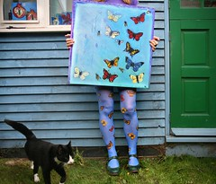 351/365  les Papillons et le chat (sosij) Tags: selfportrait art cat painting studio butterflies tights hose kitteh puddycat bluetights studioboo artistcanvas printedtights butterflytights byboo greenflyshoes itisastudionotashed