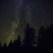 Gallery Stellar Searching 5073271013_f40d4f4b30_s