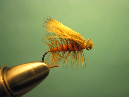Orange Elk Hair Caddis