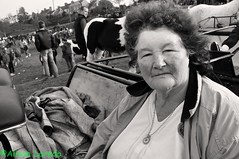 Ballinasloe October Fair by Alison Laredo (alison laredo) Tags: ireland bw horse irish woman white black galway lady october culture fair traveller tradition trap ballinasloe 2010 octoberfair wwwalisonlaredocom