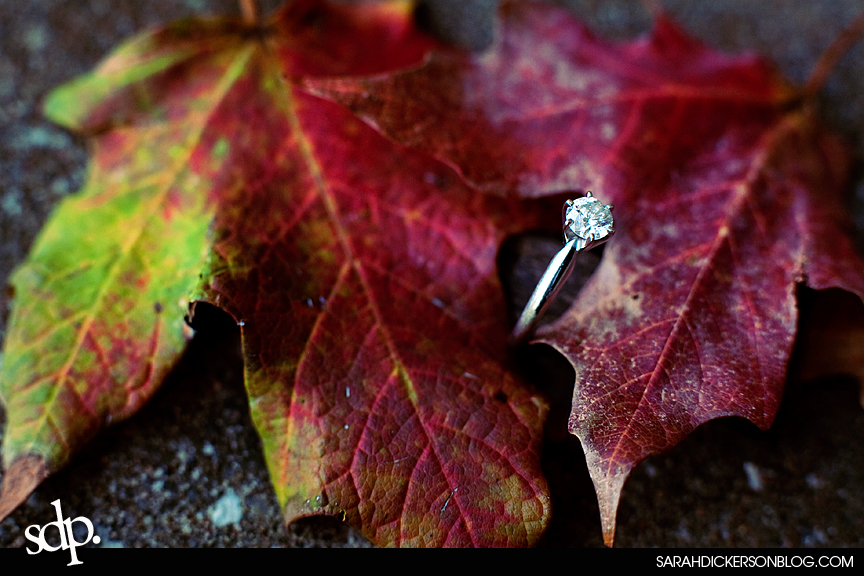 engagement photography, Loose Park, Kansas City Missouri