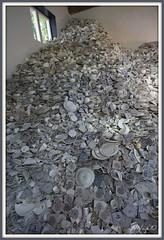 Broken Dutch (aNNaj) Tags: en cup broken dutch berg blauw wit enkhuizen tails saucer kop scherven zuiderzeemuseum gebroken mozaiek aardewerk schotel tegeltjes delfs serviesgoed gruzelementen diggels