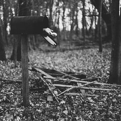 the last delivery. (karrah.kobus) Tags: blackandwhite fall monochrome leaves mailbox forest death hand message arm morbid letter delivery