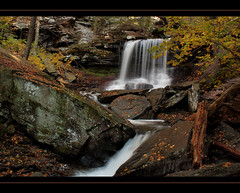 R. B. Reynolds Falls (JTF.) Tags: longexposure autumn trees red mountain mountains cold fern color tree green water leaves forest river landscape pennsylvania pa pines flowing sullivan rickettsglen rbreynolds wwwjtfosterphotographycom