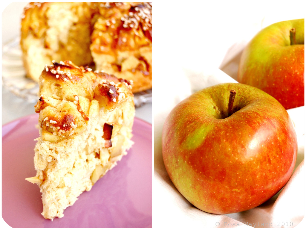 Apple Challah Picnik-Collage 5 bis
