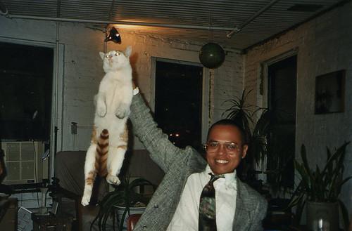 airborne cat
