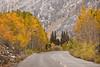 Autumn Road (Jeffrey Sullivan) Tags: california usa nature canon landscape eos october fallcolors sierra aspen eastern bishop 2010 jeffsullivan mountainhighworkshops sullivanworkshop