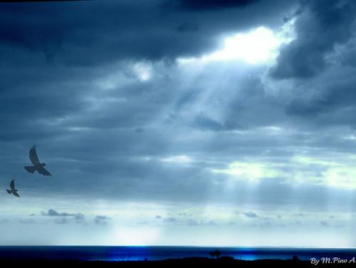 ♥ Magnifico espectaculo desde el cielo...