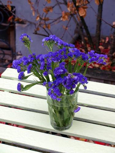 Trockenblumen in Haidhausen