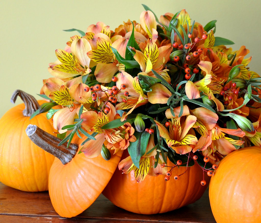 Alstromeria and Pumpkins