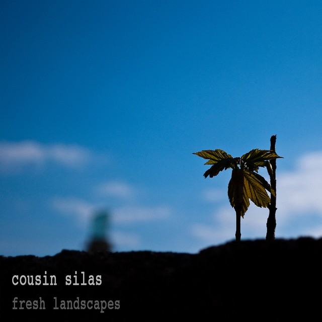 Cousin Silas_ Complex Silence 9_ Fresh Landscapes 02 fresh landscapes