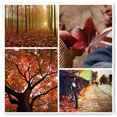 [Things I ♥ Thursday]  The changing leaves of autumn di DreamsOfNyssa