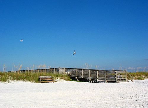 honeymoon island 2010
