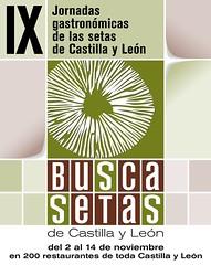 Jornadas Gastronómicas Busca Setas en Castilla y León