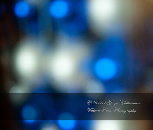 10-27-2010_christmasglassballs_wm2