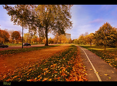 Hyde Park London (Muzammil (Moz)) Tags: autumn london fall hydepark moz londonpark afraaz autumn2010