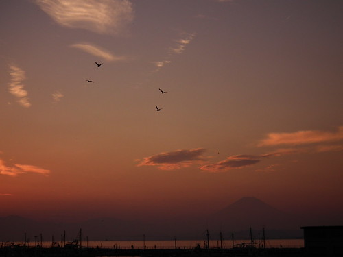 Mt.Fuji in evening glow