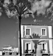 La palma (Marco Crupi Visual Artist) Tags: bw casa ombra bn finestra palma bianco nero riflesso