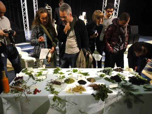 Noma - Rene Redzepi Talk - Foraged Foods Table