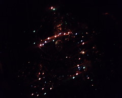 (zubillacity) Tags: light holiday reflection night cone christmastree garland fires         philips768