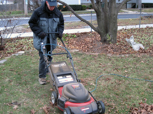 Mowing Up Leaves