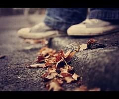 Lets stroll along the autumn paths {Explor