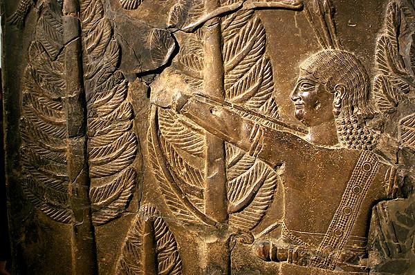 assyrian lions 2.JPG