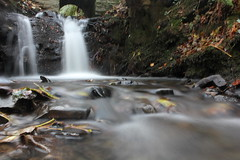 Mini waterfall (Old_Man_Mahoney) Tags: autumn motion blur water leaves wales forest river waterfall rocks rocky aberystwyth ferns rushing