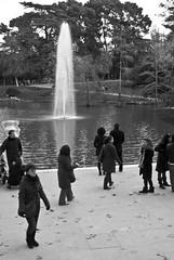 Jet d'eau sur l'etang un dimanche à midi (Ca'mont) Tags: madrid parque fall blancoynegro paseo otoño estanque retiro domingo frio jetdeau dominical etang palaciocristal